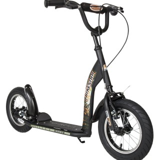 Bikestar Scooter Review